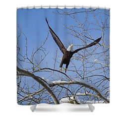 Shower Curtain featuring the photograph Lift Off by Jim  Hatch