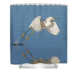 Lift Off- Snowy Egret Shower Curtain