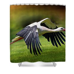 Lift Up Shower Curtain