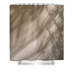 Light 7 Shower Curtain