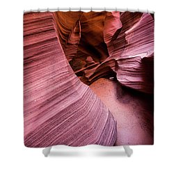 Shower Curtain featuring the photograph Light And Dark by Stephen Holst