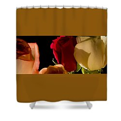 Light And Roses Shower Curtain