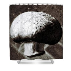 Light And Shadow 9 Shower Curtain