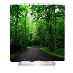 Light And Shadow On A Mountain Road Shower Curtain