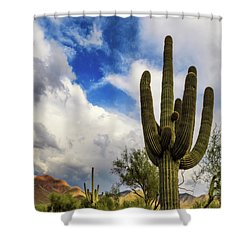 Shower Curtain featuring the photograph Light And Shadow by Rick Furmanek