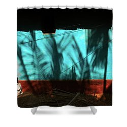 Light And Shadows Shower Curtain by Marji Lang