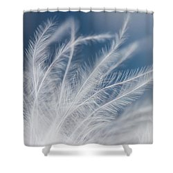 Shower Curtain featuring the photograph Light As A Feather by Yvette Van Teeffelen