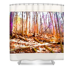 Shower Curtain featuring the photograph Light Between The Trees by Felipe Adan Lerma