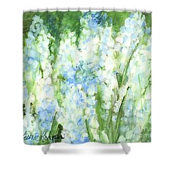 Light Blue Grape Hyacinth. Shower Curtain