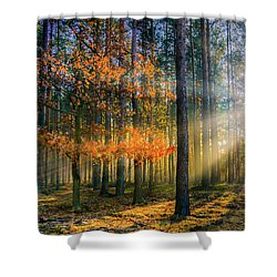 Light Catcher Shower Curtain