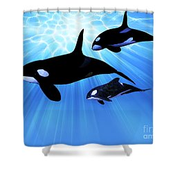Light Echo Shower Curtain by Corey Ford