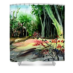 Light In The Woods Shower Curtain by Anil Nene