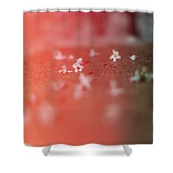 Light Leak Shower Curtain