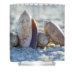 Shower Curtain featuring the photograph Light. Nature. Passion. by Melanie Moraga