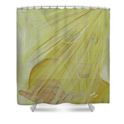 Light Of God Enfold Me Shower Curtain