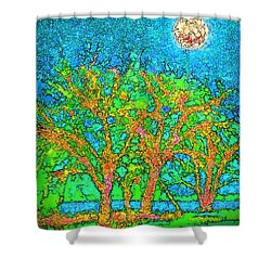 Shower Curtain featuring the digital art Light Of The Radiant Sun - Trees In Boulder County Colorado by Joel Bruce Wallach
