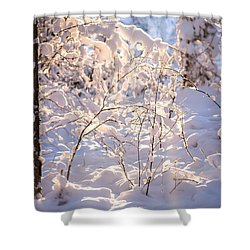 Shower Curtain featuring the photograph Light Of Winter by Rose-Maries Pictures