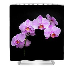 Light On The Purple Please Shower Curtain