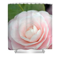 Light Pink Camellia Flower Shower Curtain