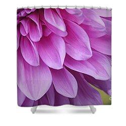 Light Purple Petals Shower Curtain