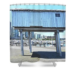 Light Shed 1 Shower Curtain