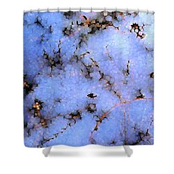 Light Snow In The Woods Shower Curtain by Dave Martsolf