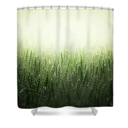 Light Storm Shower Curtain