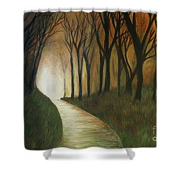 Light The Path Shower Curtain by Christy Saunders Church