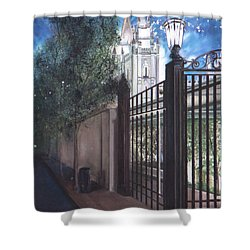 Light The World Shower Curtain