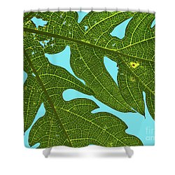 Light Through The Leaves Shower Curtain