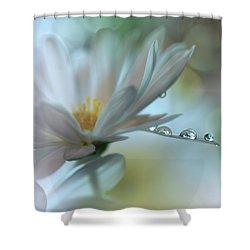..light Touch... Shower Curtain by Juliana Nan