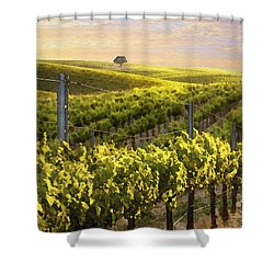 Lighted Vineyard Shower Curtain by Sharon Foster