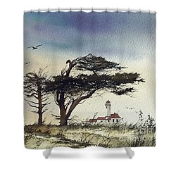 Shower Curtain featuring the painting Lighthouse Coast by James Williamson
