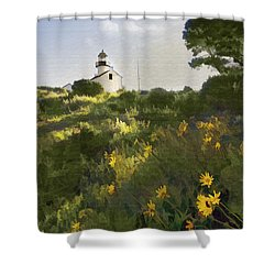 Lighthouse Daisies Shower Curtain by Sharon Foster