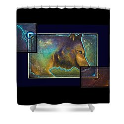 Lightning Path Shower Curtain