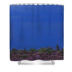 Lightning Strike In The Desert Shower Curtain by James BO  Insogna