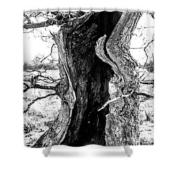 Lightning Tree Shower Curtain
