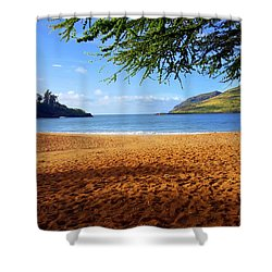 Lihue  Shower Curtain