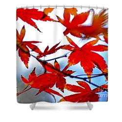 Like Autumn Butterflies In The Breeze Shower Curtain by Kaye Menner