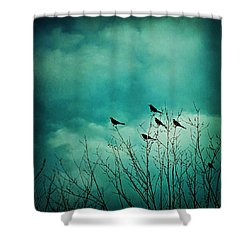 Shower Curtain featuring the photograph Like Birds On Trees by Trish Mistric