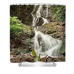Shower Curtain featuring the photograph Likeke by Heather Applegate