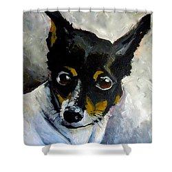 Lil Rat Terrier Shower Curtain