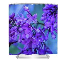 Lilac Blues Shower Curtain by Elizabeth Dow