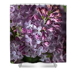 Lilac Bouquet Shower Curtain