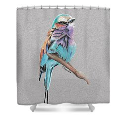 Shower Curtain featuring the drawing Lilac Breasted Roller by Gary Stamp