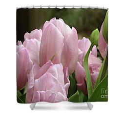 Lilac Charm #2 Shower Curtain
