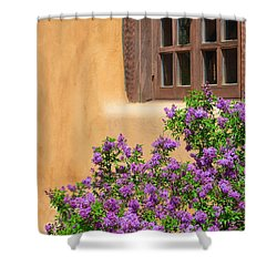 Lilacs And Adobe Shower Curtain
