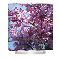 Lilacs In Bloom 2 Shower Curtain by Barbara Yearty