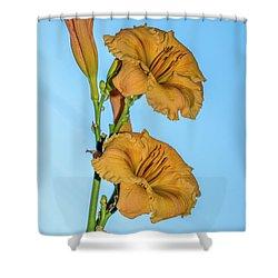 Lilies Shower Curtain