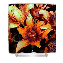 Lilies In The Shadow Shower Curtain by Jasna Dragun